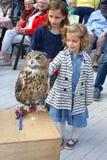 De meisjes petting een wilde adelaarsuil Royalty-vrije Stock Afbeeldingen