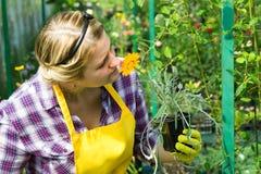 De meisjes streven naar bloemen in de serre royalty-vrije stock afbeeldingen