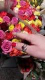 De meisjeshand neemt gekleurde bloemen Stock Afbeelding