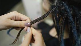 De meisjeskapper weeft dreadlocks cliënt in de salon stock footage
