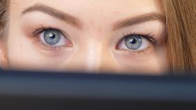 De meisjesmakelaar controleert de verandering online van de handel op uw computer