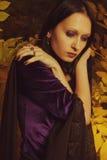 De melancholie van de herfst Stock Foto's