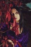 De melancholie van de herfst Royalty-vrije Stock Foto