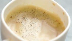 De melk giet in de koffie stock video
