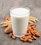 De melk van de amandel Royalty-vrije Stock Fotografie