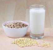 De melk van de soja met ruwe sojaboon Stock Foto's