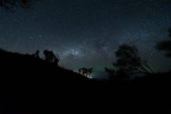 De melkachtige die manier boven het donkere silhouet van het bos wordt verlicht Stock Fotografie