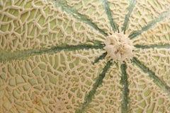 De Meloen van de kantaloep Royalty-vrije Stock Fotografie