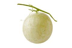 Geïsoleerdej de meloen van de kantaloep Stock Afbeelding