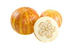 De meloen van Tigger. royalty-vrije stock afbeelding