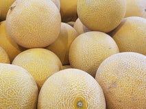 De meloenen van Galia royalty-vrije stock foto