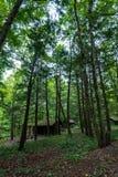 De Memorial Vuurtoren van Robert H Het Park van de Tremanstaat: Cabines stock afbeelding