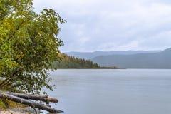 De Mendenhall-Rivier in Juneau, Alaska stock fotografie