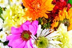 De mengeling van bloemen Stock Afbeeldingen