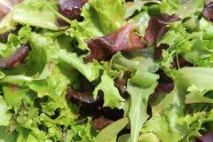De mengeling van de salade Stock Foto's