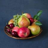 De mengeling van het de herfstfruit - verse appelen, peren, druiven en pruimen in een rieten houten plaat Donkerblauwe achtergron stock afbeelding