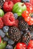 De mengeling van het fruit, bes stock afbeeldingen