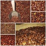De mengselscollage van koffiebonen stock fotografie
