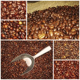 De mengselscollage van koffiebonen stock afbeelding