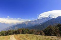 De mening en de trekkingsweg van de Annapurnabergketen in Rododendron Royalty-vrije Stock Afbeelding