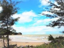 De mening van de aardkust bij de Baai Miri Sarawak Malaysia van Tanjung Lobang stock foto