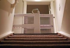 De mening van de babypoort van kelderverdieping met tapijttreden stock afbeelding