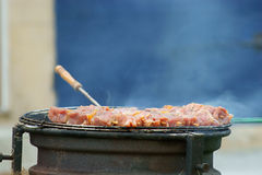 De mening van de barbecue stock afbeelding