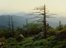 De Mening van de berg stock afbeeldingen