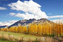 De mening van de berg in de Herfst Stock Afbeelding