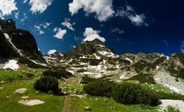 De mening van de berg met groene ecologische aard Royalty-vrije Stock Foto