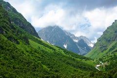 De Mening van de Berg van de zomer Stock Foto