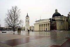 De mening van de de plaatswinter van de Vilniuskathedraal op 10 Februari Royalty-vrije Stock Foto's