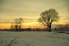 De mening van de de winterzonsondergang van het land Stock Afbeeldingen