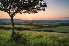De mening van de de Zomerzonsondergang van het landschapsbeeld over Engels platteland Stock Afbeelding
