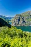 De mening van de fjord Stock Afbeeldingen