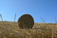 De mening van de grond op een stro verpakt met stro in balen Royalty-vrije Stock Foto