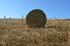 De mening van de grond op een stro verpakt met stro in balen Stock Foto's