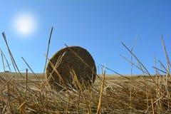 De mening van de grond op een stro verpakt met zon in balen Stock Afbeelding