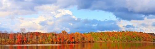 De mening van de herfst van het meer en het bos. stock fotografie