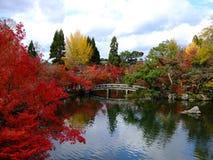 De mening van de herfst van vijver Hojo Royalty-vrije Stock Foto's