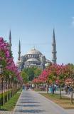 De mening van de Istambulstraat Stock Fotografie