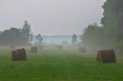 De mening van de landbouw met oogst Royalty-vrije Stock Afbeelding