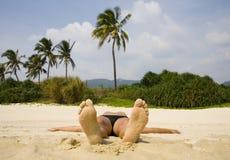 De mening van de palm royalty-vrije stock afbeelding