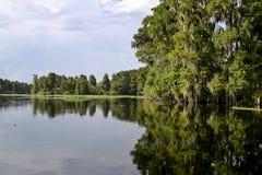 De mening van de rivier Royalty-vrije Stock Afbeeldingen