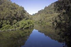 De Mening van de rivier Royalty-vrije Stock Afbeelding