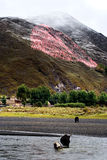 De mening van de sneeuw van tibetan dorp bij shangri-La China Stock Foto