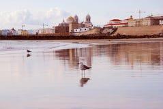 De mening van de stad van Cadiz Royalty-vrije Stock Afbeelding