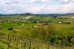De mening van de wijngaard in Italië Stock Fotografie