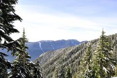 De mening van de winter van bergen Stock Fotografie