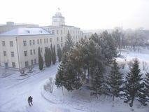 De mening van de winter van Qiqihaer stock foto's